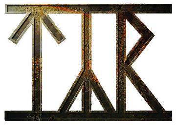 logo Týr