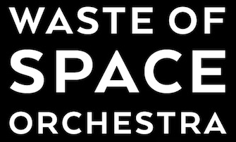 logo Waste of Space Orchestra