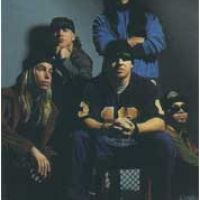 Photo de Infectious Grooves