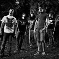 Photo de Protest The Hero