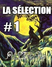 Interview : La Sélection #1 : Ulver commenté par Aymeric Thomas (Pryapisme)